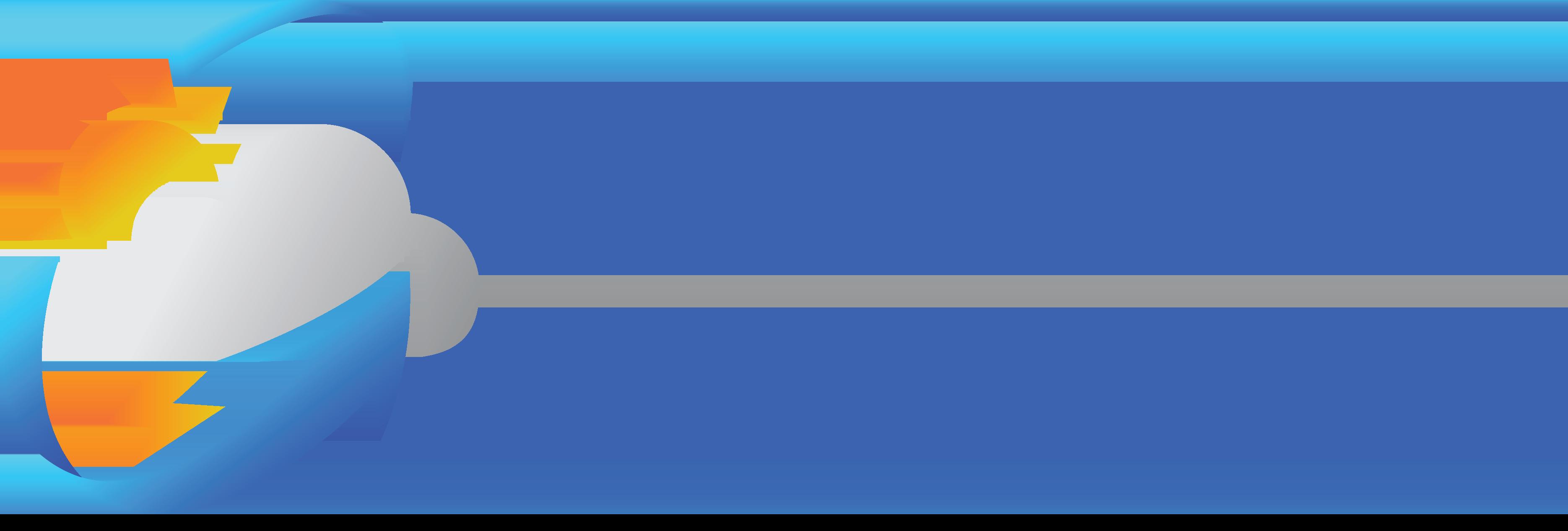 WDSS International
